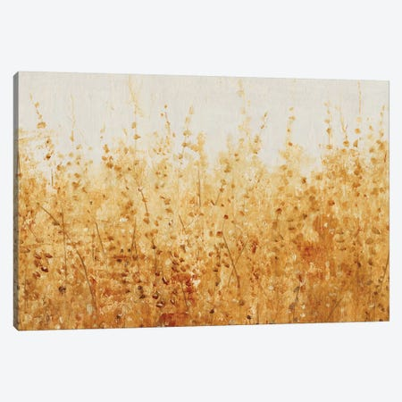 Ochre Fields I Canvas Print #TOT339} by Tim OToole Art Print
