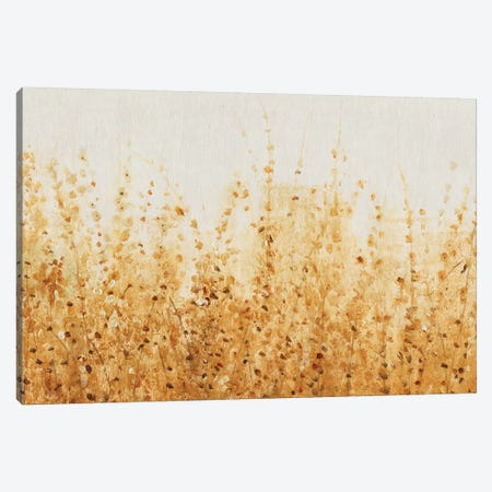 Ochre Fields II Canvas Print #TOT340} by Tim O'Toole Canvas Wall Art