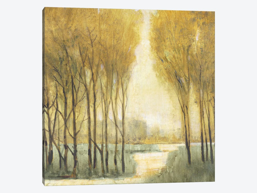 Pathway Sanctuary by Tim OToole 1-piece Canvas Wall Art