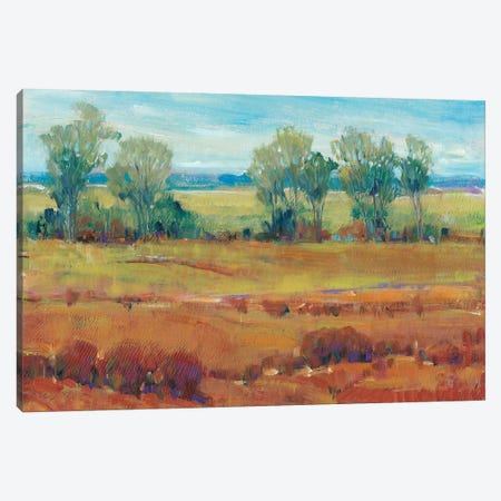 Red Clay I Canvas Print #TOT342} by Tim OToole Canvas Art