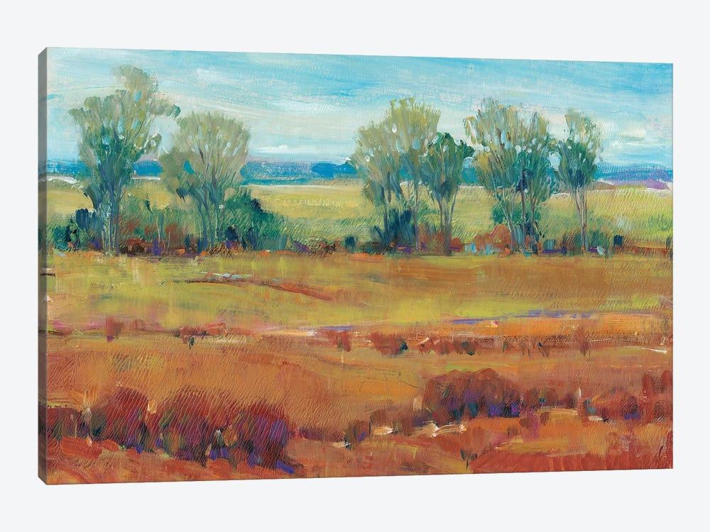 Red Clay I by Tim OToole 1-piece Canvas Print