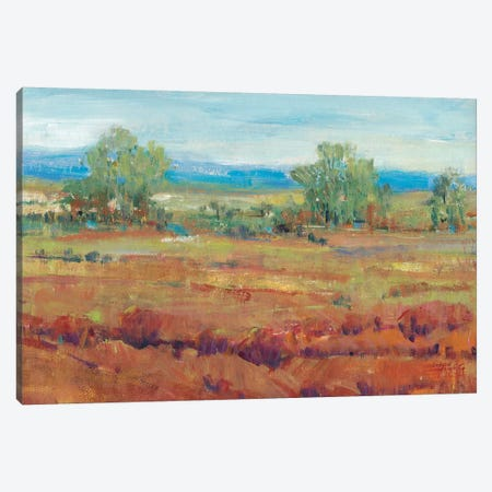 Red Clay II Canvas Print #TOT343} by Tim OToole Canvas Art