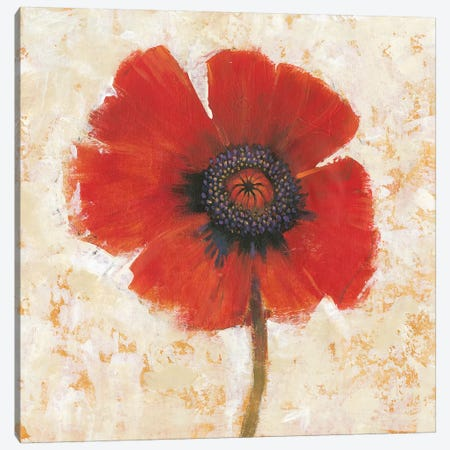 Red Poppy Portrait I 3-Piece Canvas #TOT344} by Tim OToole Canvas Art Print