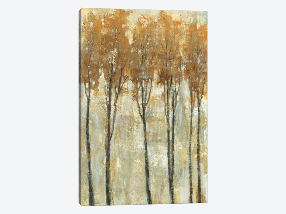 Standing Tall In Autumn I by Tim OToole 1-piece Canvas Art
