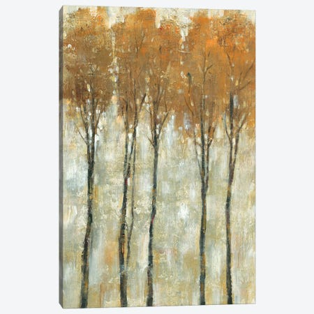 Standing Tall In Autumn II Canvas Print #TOT351} by Tim OToole Art Print