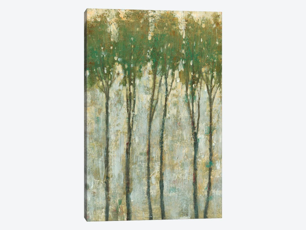 Standing Tall In Spring I by Tim OToole 1-piece Canvas Wall Art