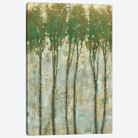Standing Tall In Spring I 3-Piece Canvas #TOT352} by Tim OToole Canvas Print