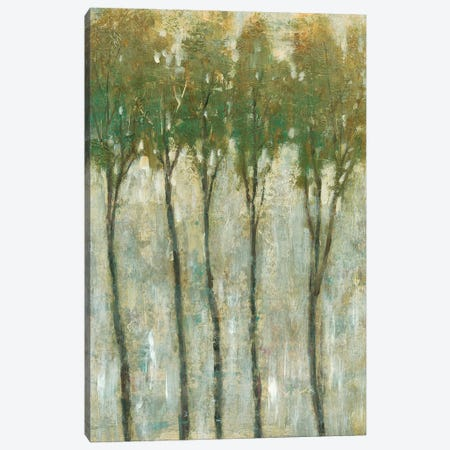 Standing Tall In Spring II 3-Piece Canvas #TOT353} by Tim OToole Art Print