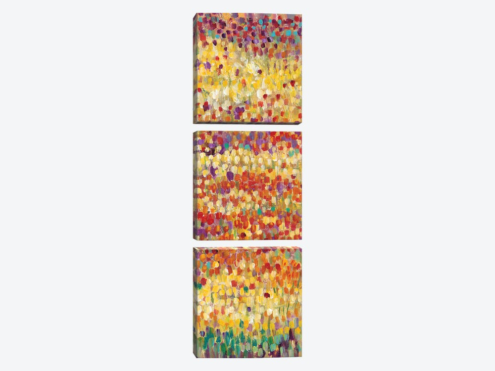 Tulips In Bloom II by Tim OToole 3-piece Art Print