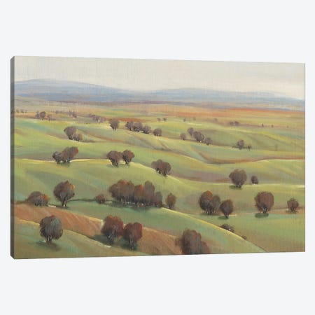 Beyond the Hills I Canvas Print #TOT362} by Tim OToole Canvas Wall Art