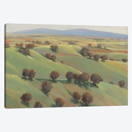 Beyond the Hills II 3-Piece Canvas #TOT363} by Tim OToole Canvas Wall Art