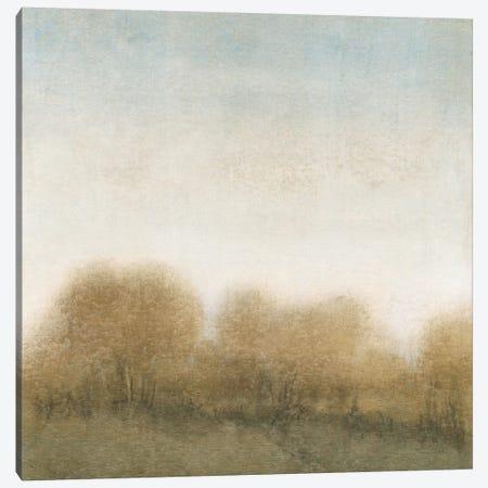 Golden Treeline II Canvas Print #TOT36} by Tim OToole Art Print