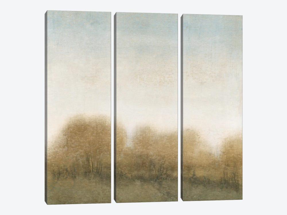 Golden Treeline II by Tim OToole 3-piece Canvas Wall Art