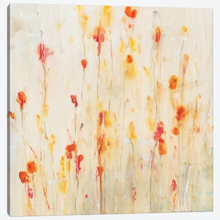 Fleeting Flowers II 3-Piece Canvas #TOT371} by Tim OToole Canvas Print
