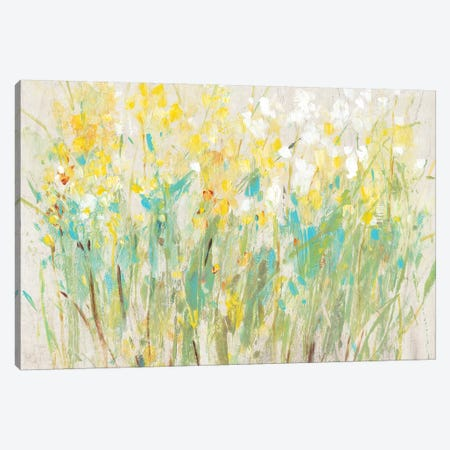 Floral Cluster II 3-Piece Canvas #TOT373} by Tim OToole Art Print