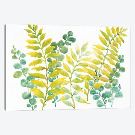 Mixed Greenery II 3-Piece Canvas #TOT383} by Tim OToole Canvas Artwork