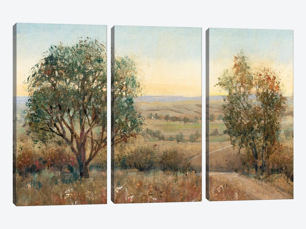 Overlook I by Tim OToole 3-piece Canvas Art Print