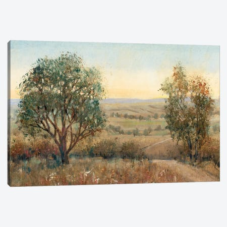 Overlook I 3-Piece Canvas #TOT388} by Tim OToole Canvas Art