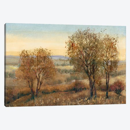 Overlook II 3-Piece Canvas #TOT389} by Tim OToole Canvas Wall Art