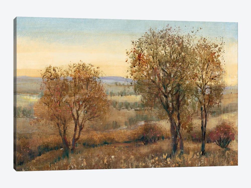 Overlook II by Tim OToole 1-piece Canvas Artwork