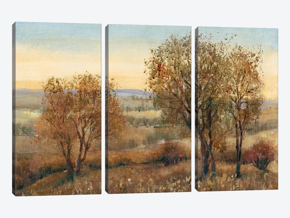 Overlook II by Tim OToole 3-piece Canvas Art