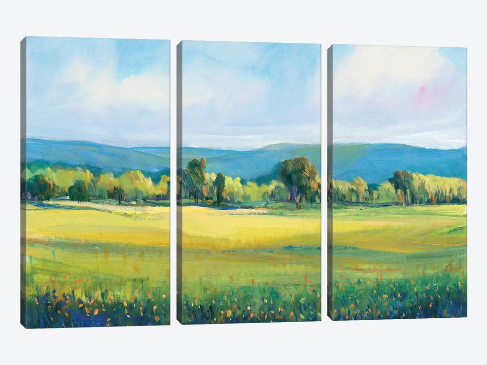 Partly Cloudy I by Tim OToole 3-piece Canvas Wall Art