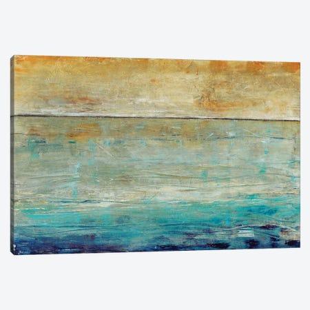 Placid Water I Canvas Print #TOT392} by Tim OToole Art Print