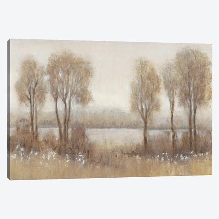 Rainy Afternoon II 3-Piece Canvas #TOT395} by Tim OToole Canvas Wall Art