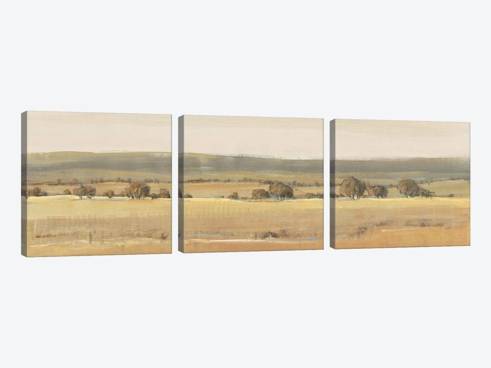 Season's End II by Tim OToole 3-piece Canvas Art Print