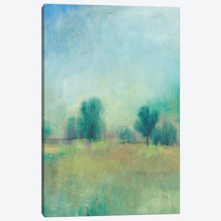 Serene Spring I Canvas Print #TOT398} by Tim OToole Canvas Print