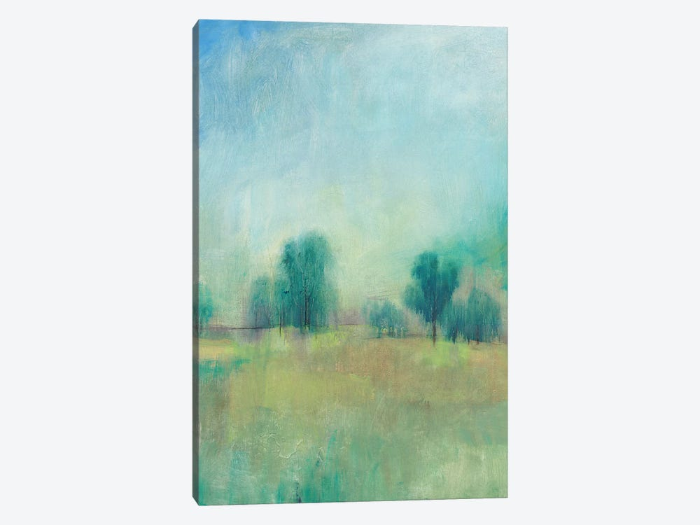 Serene Spring I by Tim OToole 1-piece Canvas Art