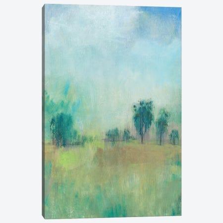 Serene Spring II Canvas Print #TOT399} by Tim OToole Art Print