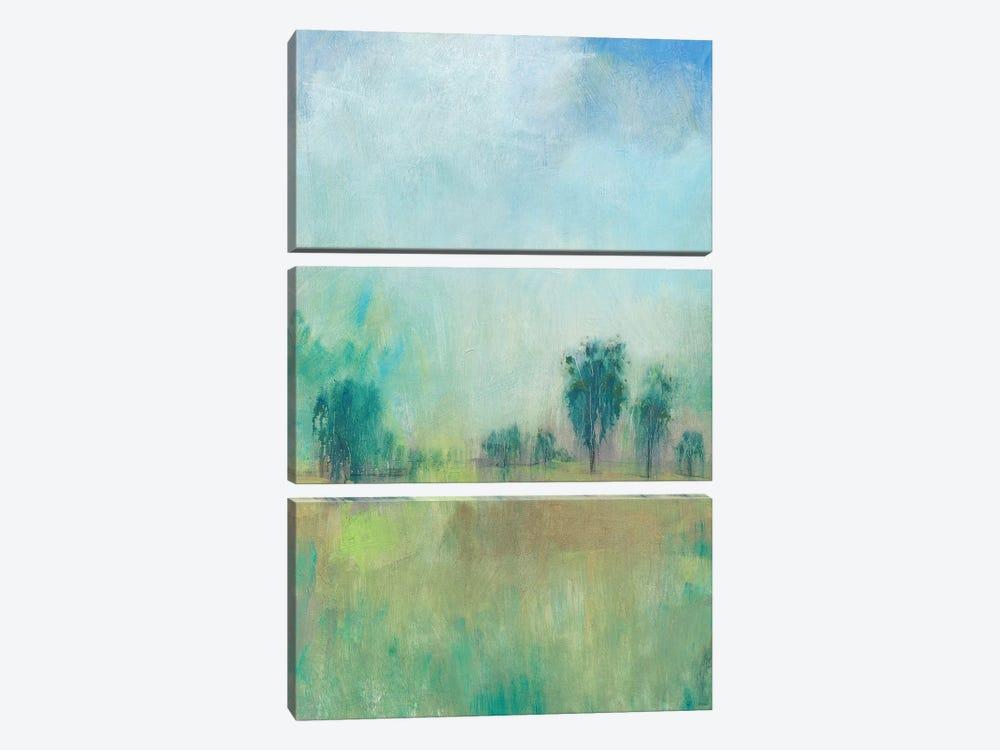 Serene Spring II by Tim OToole 3-piece Canvas Print
