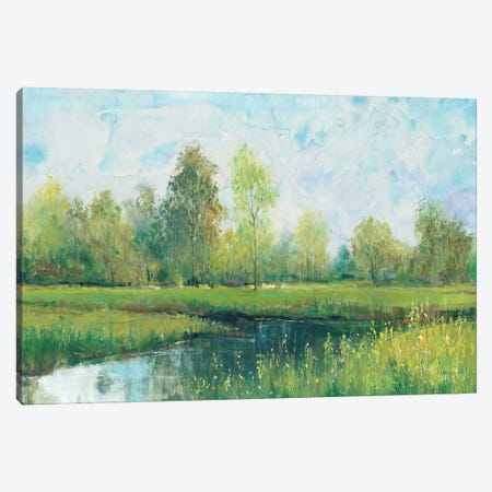 Tranquil Park I 3-Piece Canvas #TOT404} by Tim OToole Canvas Wall Art