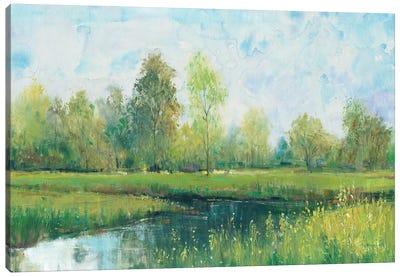 Tranquil Park I Canvas Art Print