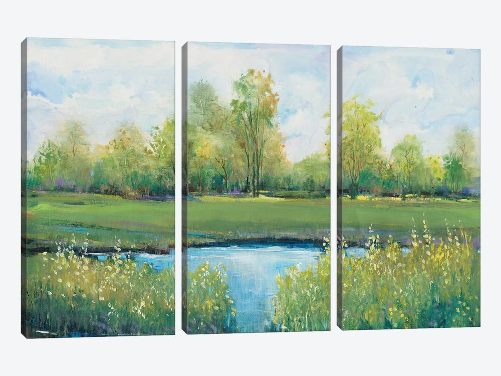 Tranquil Park II by Tim OToole 3-piece Canvas Print