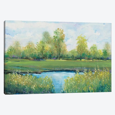 Tranquil Park II 3-Piece Canvas #TOT405} by Tim OToole Canvas Artwork