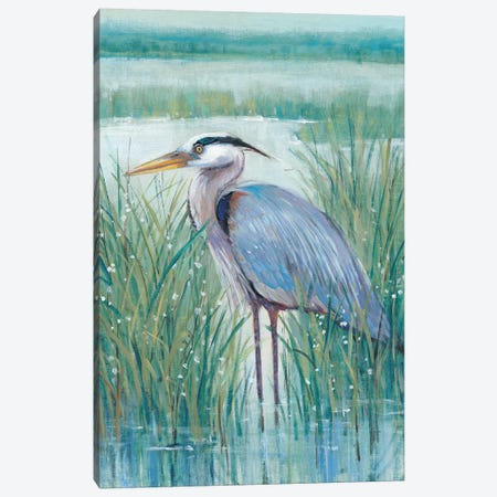 Wetland Heron II Canvas Print #TOT407} by Tim OToole Canvas Wall Art