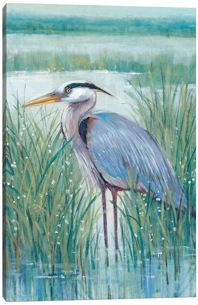 Wetland Heron II Canvas Art Print