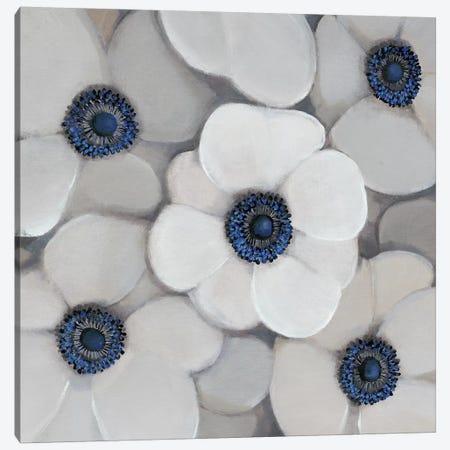 White Anemone I Canvas Print #TOT408} by Tim OToole Art Print