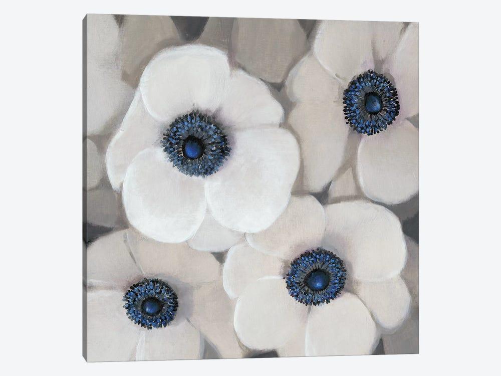 White Anemone II by Tim OToole 1-piece Canvas Art Print