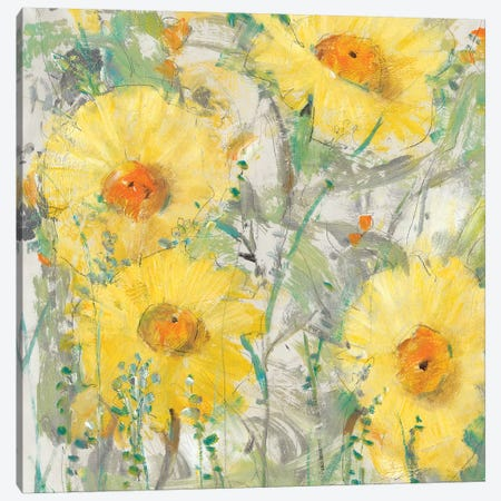 Yellow Bunch II 3-Piece Canvas #TOT411} by Tim OToole Canvas Artwork