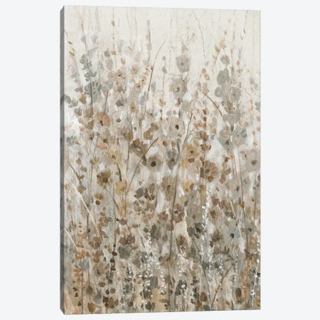 Early Fall Flowers I Canvas Print #TOT420} by Tim OToole Art Print
