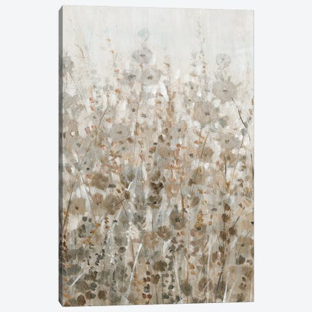 Early Fall Flowers II Canvas Print #TOT421} by Tim OToole Canvas Print