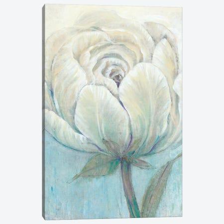 English Rose I Canvas Print #TOT424} by Tim OToole Canvas Art