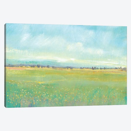 Soft Meadow Light I Canvas Print #TOT438} by Tim OToole Canvas Artwork