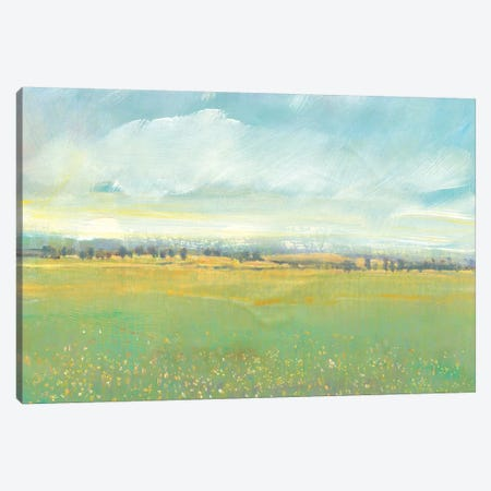 Soft Meadow Light II Canvas Print #TOT439} by Tim OToole Canvas Artwork
