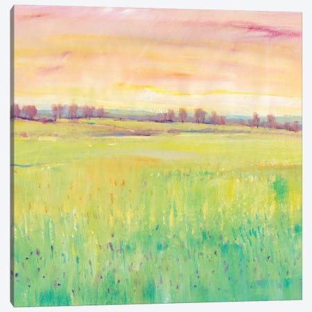 Spring Pasture I Canvas Print #TOT440} by Tim OToole Canvas Print
