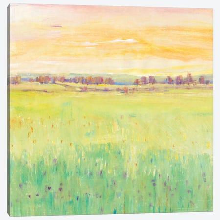 Spring Pasture II Canvas Print #TOT441} by Tim OToole Art Print
