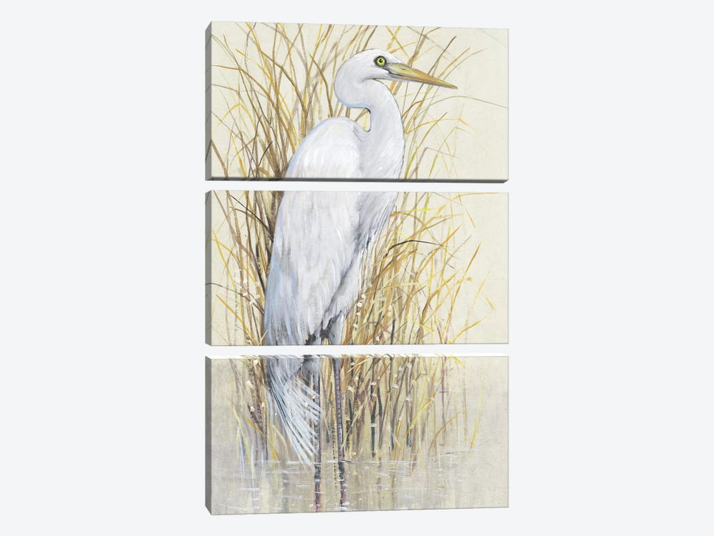 Wading I by Tim OToole 3-piece Canvas Artwork